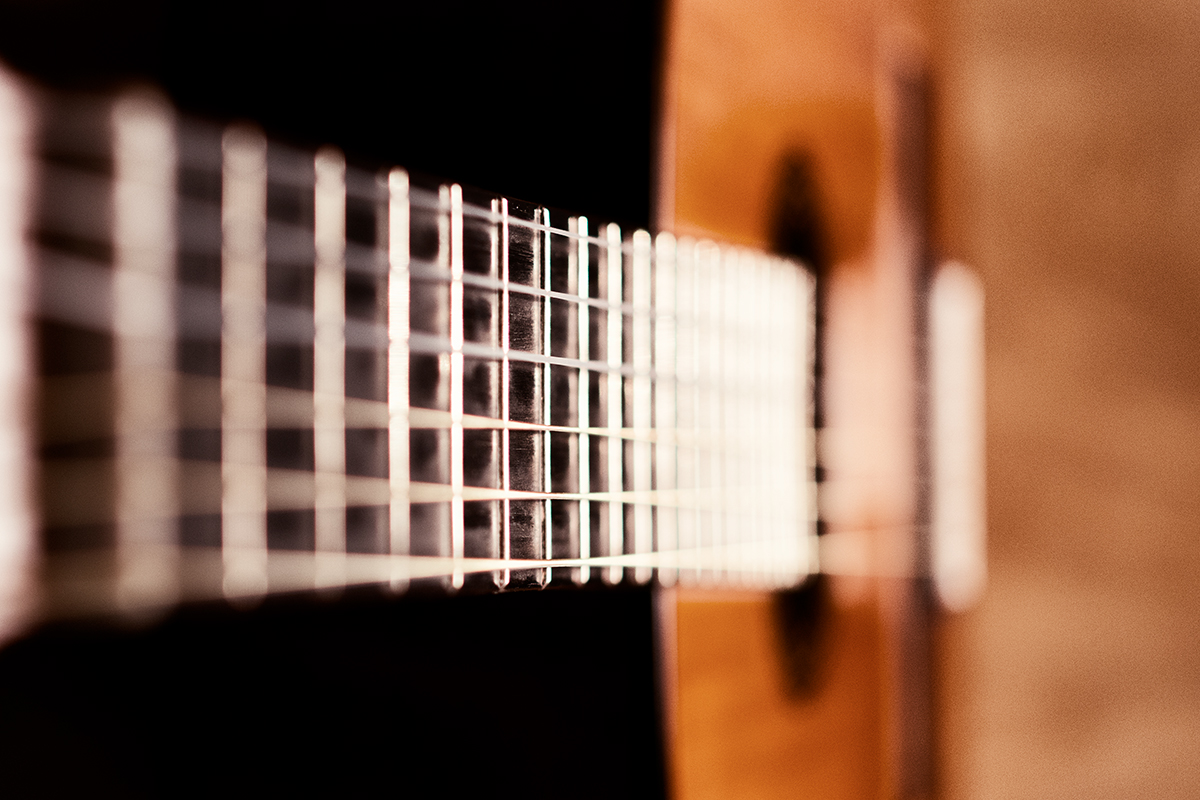 Kytara napříč žánry