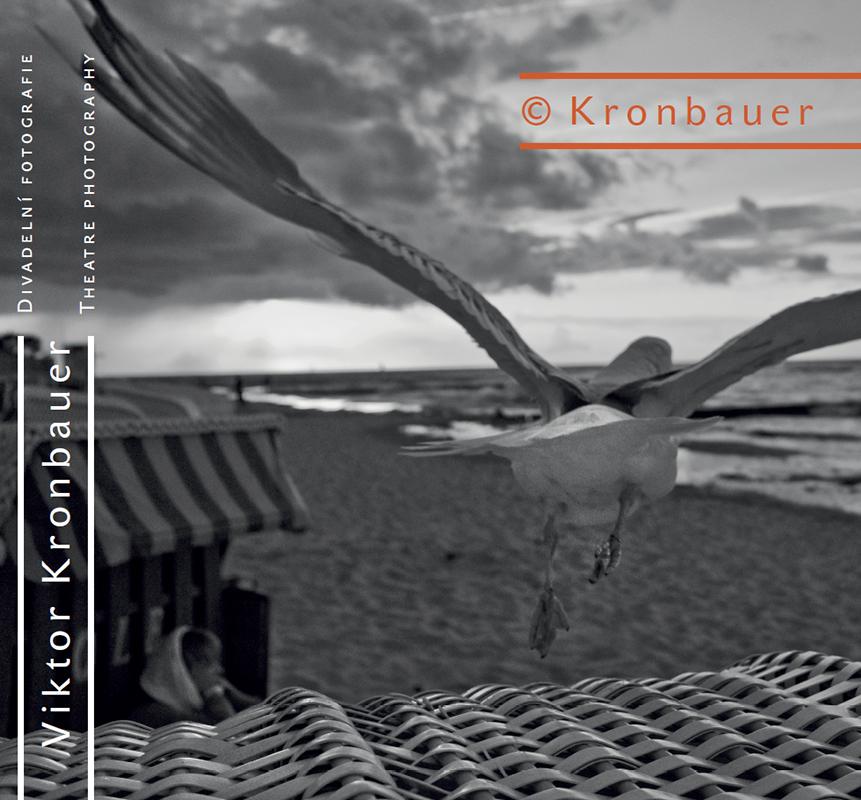 Žák Jaroslava Krejčího Viktor Kronbauer vydává monografii